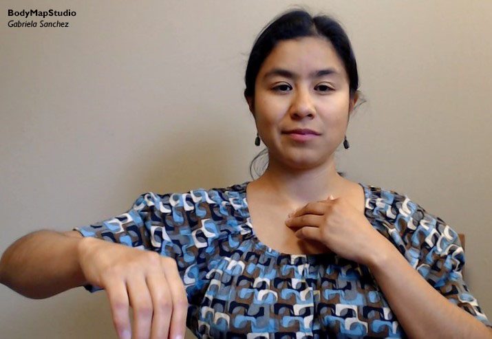 Gabriela palpating the first arm joing between the sternum and collarbone.